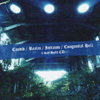 Candid (Jpn) / Realm (Jpn) / Intraum (Jpn) / Congenital Hell (Jpn) - 4-way Split - CD