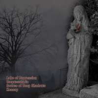Lake Of Depression (Pan) / Crepuscularia (Rus) / Source Of Deep Shadows (Rus) / Quarsar (Rus) - Split - CD