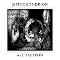 Mitochondrion (Can) - Archaeaeon - 2LP