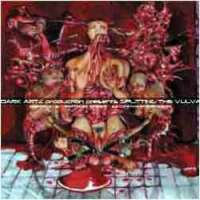 Cardiac Necropsy (Sin) / Necrotic Chaos (Mal) - Splitting the Vulva - CD