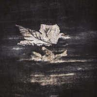 Edieh (Chn) - In Case The Winds Blow - digi-CD