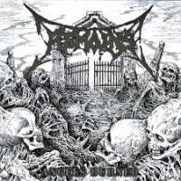 Remains (Mex) - Angels Burned - CD
