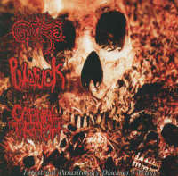 Gore (Bra) / Putrefuck (Esp) / Carnal Trash (Arg) - Intestinal Parasitology Diseases 3 Ways - CD