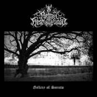 A Portrait of Flesh and Blood (Aus/Jpn/USA) - Gallery of Sorrow - CD